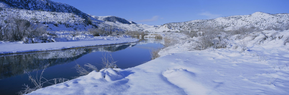 Los Padres National Forest in the snow